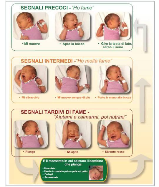 Guarda quali sono i segnali che il neonato manifesta quando vuole essere allattato